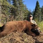 Bear2018